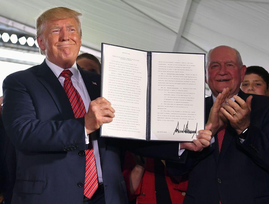 Agriculture Secretary Perdue says no farm bailout, Trump says FARM BAILOUT