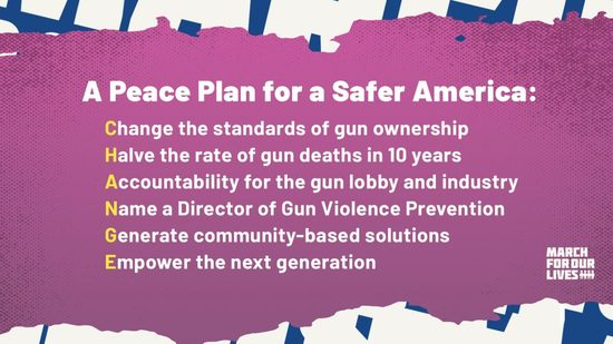 Peace Plan for a Safer America created by the March for Our Lives organization, released August 26, 2019.