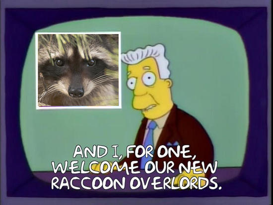 all we need is a raccoon as a flag officer at Space Force