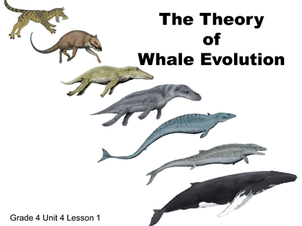 IAN: September 20, 2019 Education in Biology and Evolution