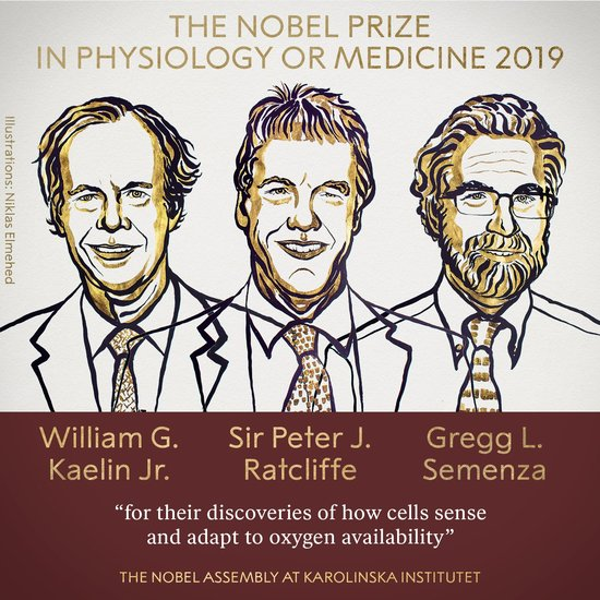 Nobel prize winners for Medicine/Physiology for 2019