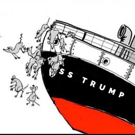 Rats jumping out of Trump ship