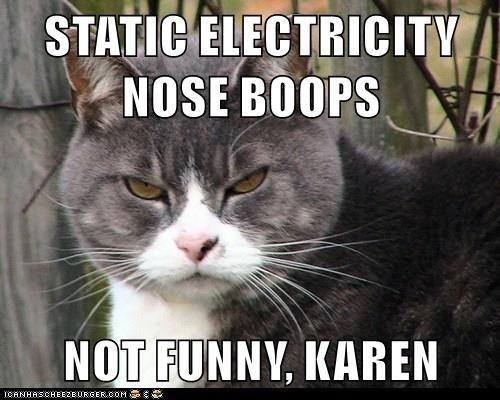 karen-the-cat-lady-memes-03.jpg