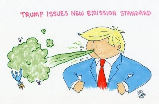 stink7.jpg