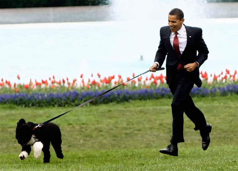 PWB Peeps Open Thread: Presidents' Pets Day