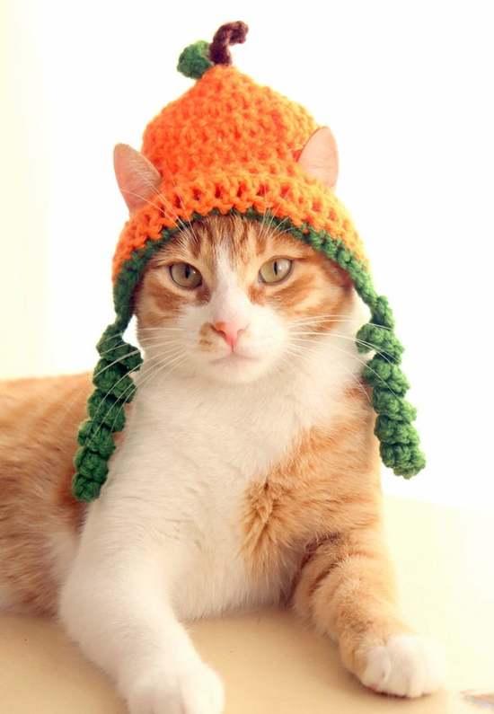 Peachment-cat-in-hat-crochetted-like-peach-attb-Pinterest.jpg