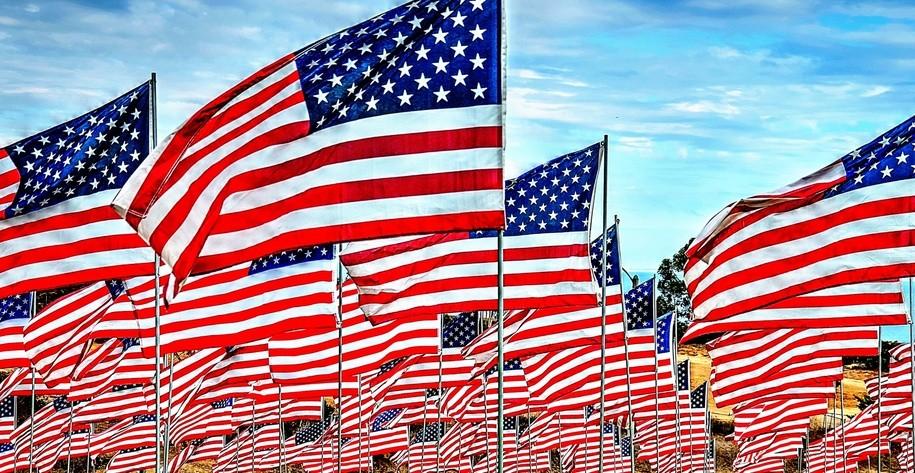 The Pledge Of Allegiance Belongs To Bernie
