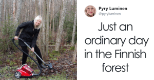 FinlandForestRaking2018.png