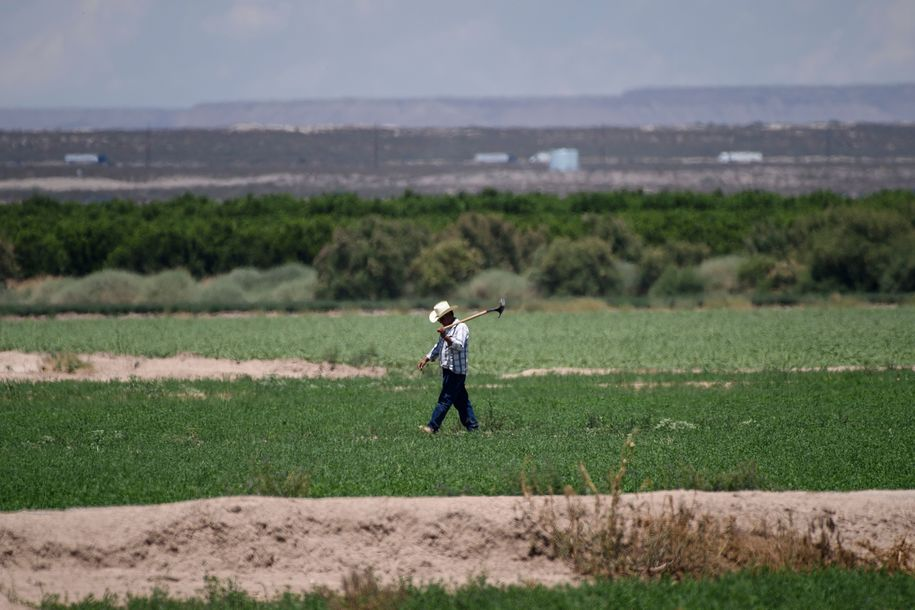 It's not just COVID-19. Farmworkers face enormous health risks all year long