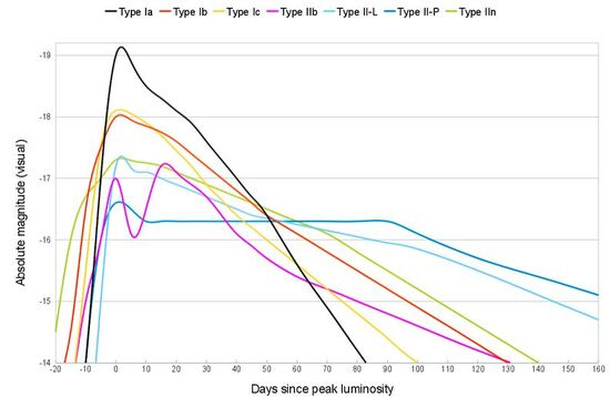 Light curves for various supernova types.  When they first become visible, they are rapidly brightening