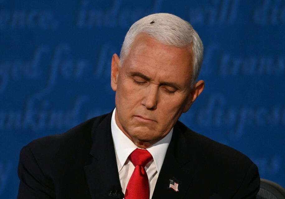 Crazy/Stupid Republican of the Day: Mike Pence- 2020 Update