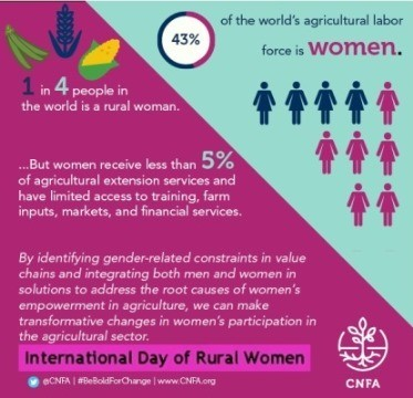 InternationalDayofRuralWomenstats.jpg