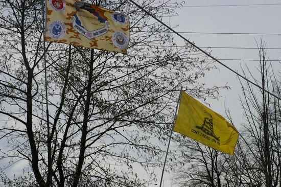 Gadsden flag att 'Minutemen' muster in Blaine, WA 2006