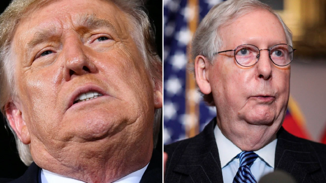 too many chins and not enough smarts McConnell and Trump go for each others jugular