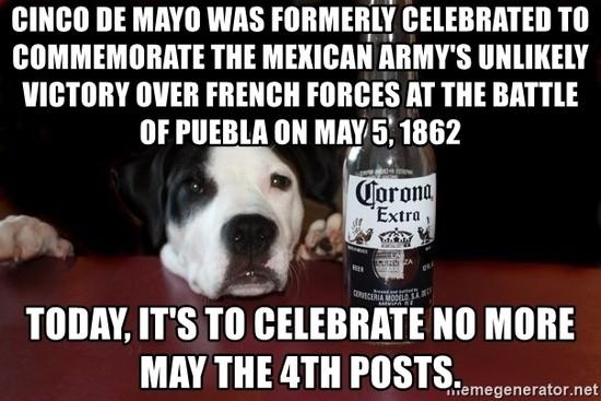 cinco-de-mayo-dog-celebrates-no-more-4th-jokes-memegenerator.jpg