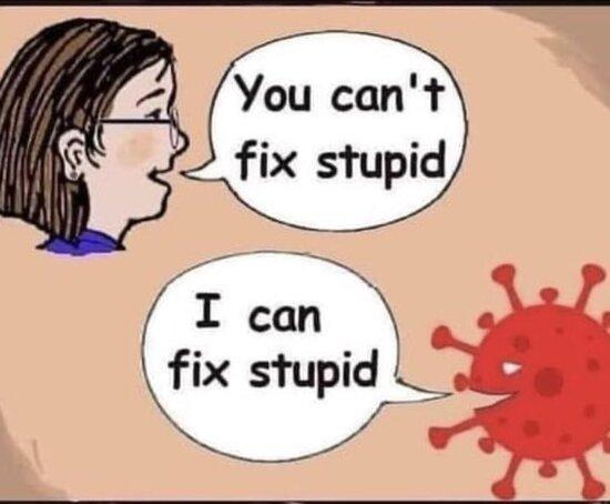 Covid_Can_Fix_Stupid.jpg
