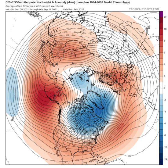 A major displacement towards north America of the cold air in the northern hemispheric atmospheric circulation is forecast for February 2022 by the American CFS model.