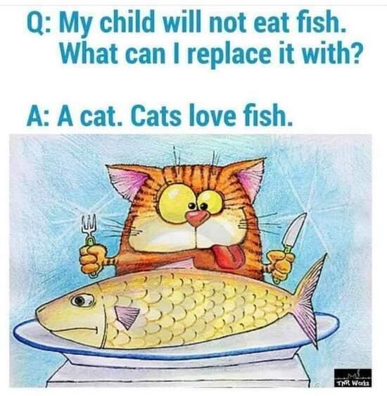 cat31121b.jpg